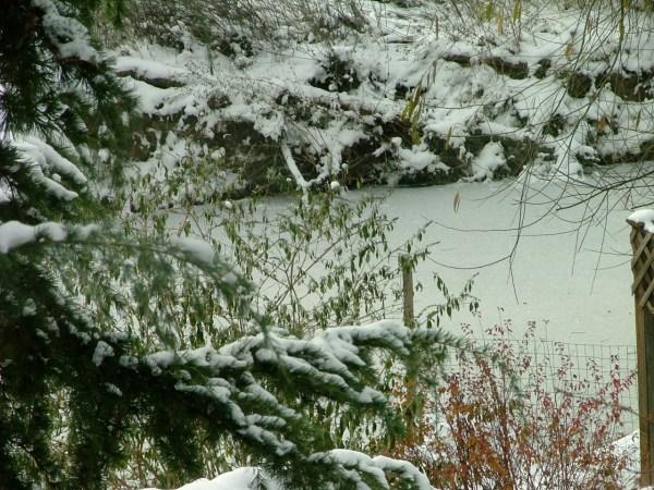 wide hollow creek yakima