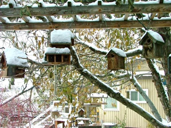 yakima, wa birdhouses
