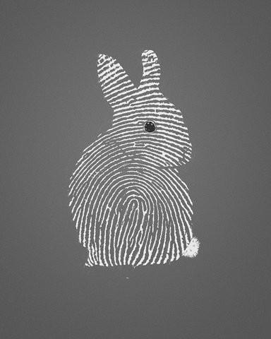 thumb print bunny rabbit