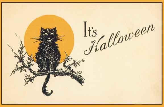 vintage black cat halloween postcard