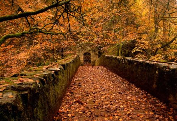 scotland in autumn