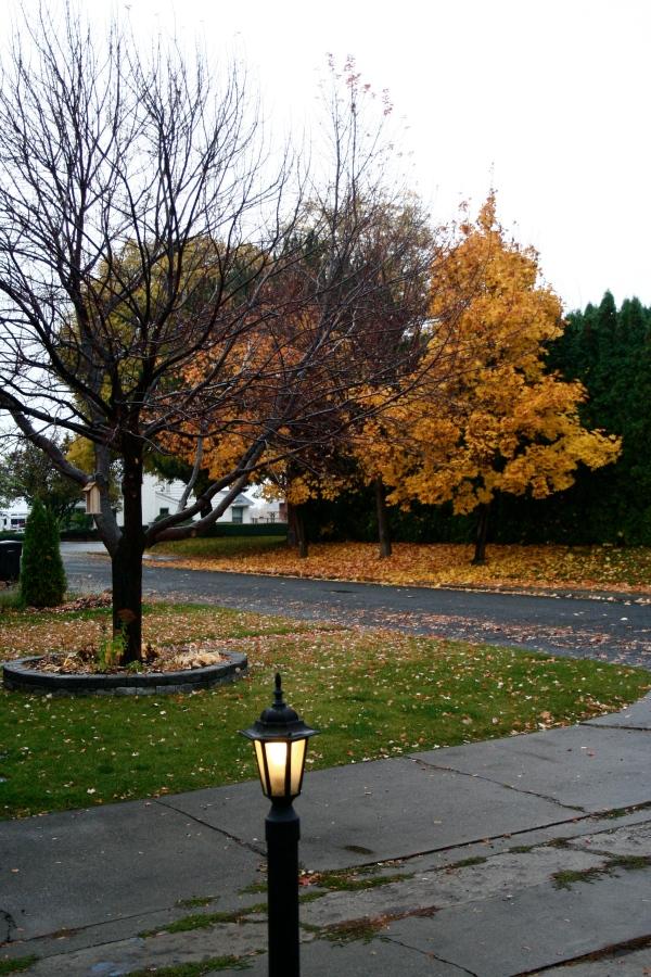 autumn in yakima, wa