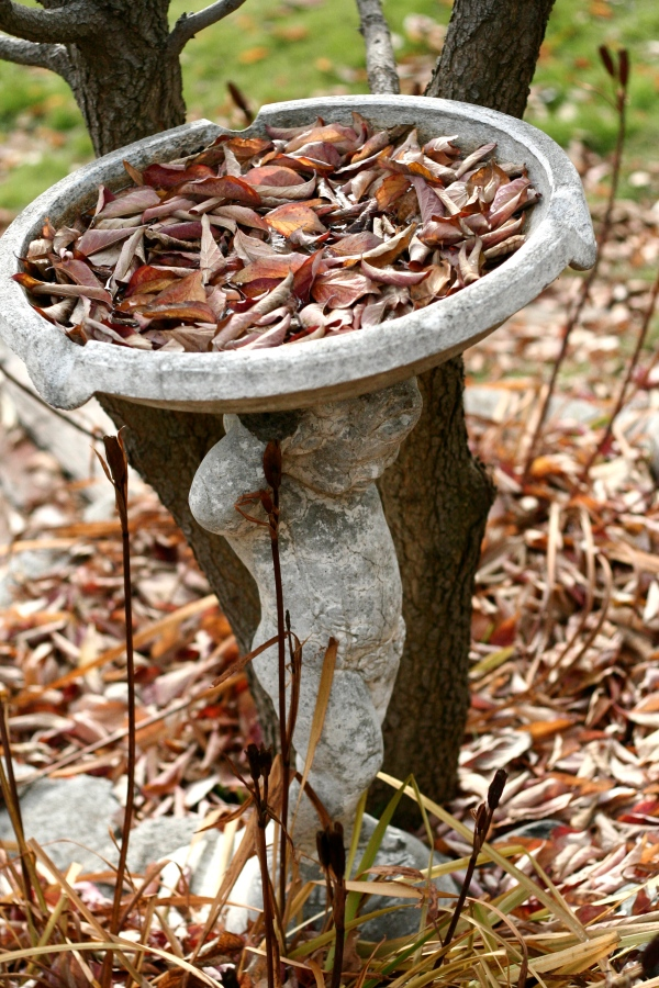 autumn leaves birdbath angel cherub