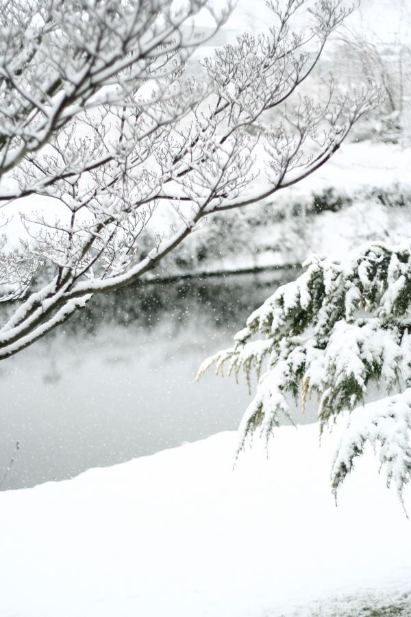holiday snow