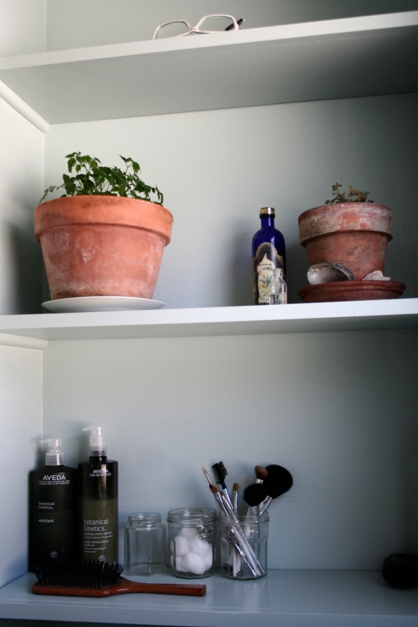 shelves above toilets