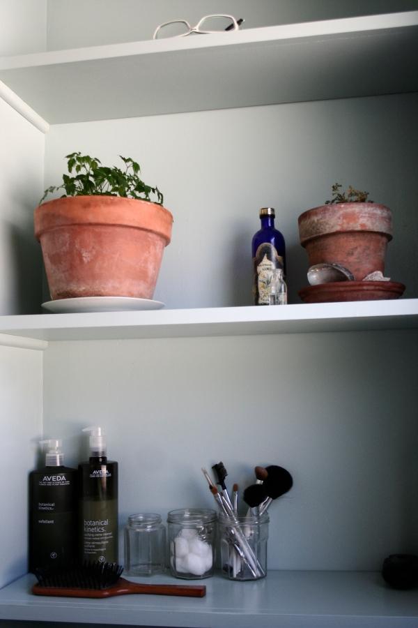 shelves above toilets